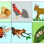 Flash_animals